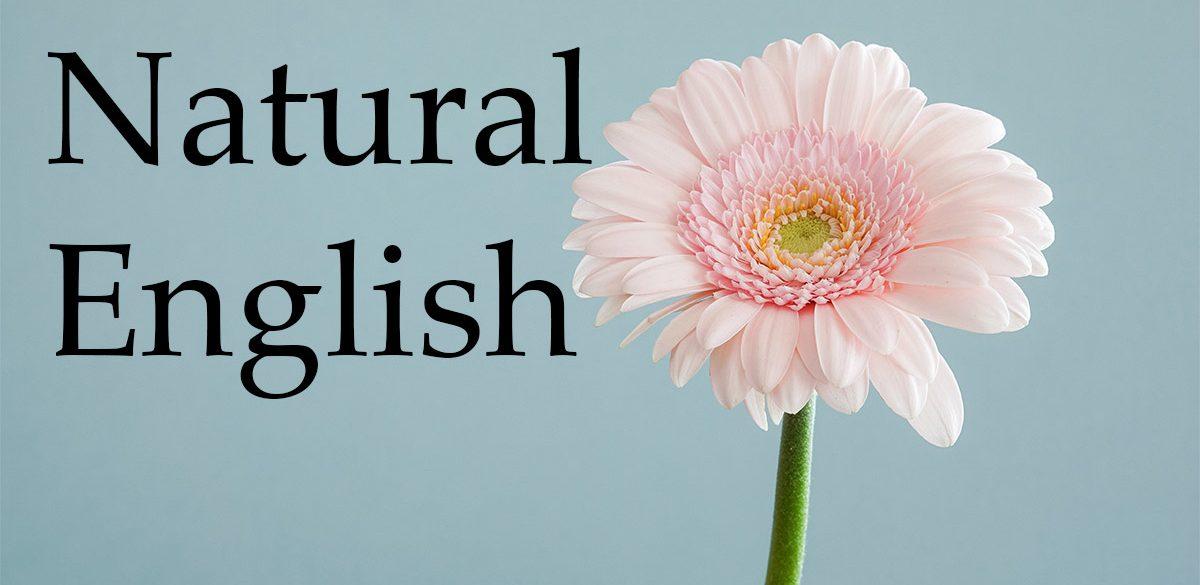 Natural English英会話教室 淀川区西中島